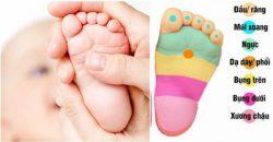 Mách mẹ cách bấm huyệt bàn chân giúp dỗ bé nín khóc hay đau ốm