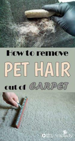 Làm thế nào để dọn sạch lông thú cưng bám trên vải?