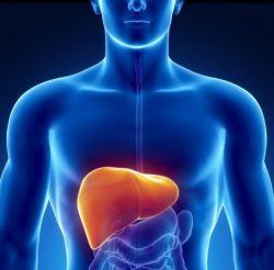 Những biện pháp hiệu quả cứu lá gan của bạn