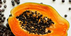 Bài thuốc đơn giản từ hạt đu đủ chữa dứt điểm bệnh gai cột sống