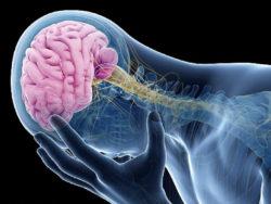 Dấu hiệu cảnh báo chứng phình mạch máu não