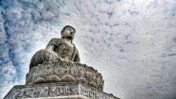 https://blog.wikilady.vn/the-nao-la-hanh-phuc-lia-kho-duoc-vui-trong-phat-giao/