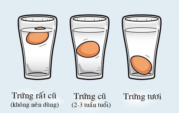 Nhận biết trứng mới hay cũ bằng nước muối pha loãng