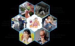 Những liệu pháp tự nhiên trị viêm phế quản tại nhà