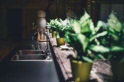 Biến căn bếp ngày Tết thành không gian ngập tràn cảm hứng